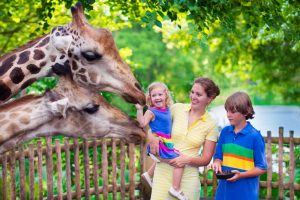 Singapore-Zoo-Visit-Family-Trip-Limo-Hire-Rent
